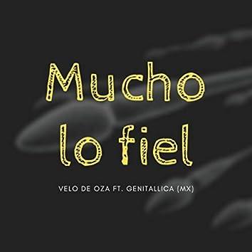 Mucho Lo Fiel (feat. Genitallica)