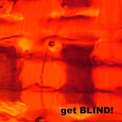 blind in the brain