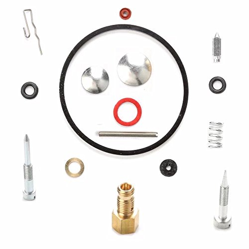 Paddsun 31840 49-840 520-338 Carburetor Repair Rebuild Overhual Kit for Tecumseh H22 H25 H30 H35 H40 H50 H60 H70 HH40 HH50 HH60 HH70 Engine Lawn-boy Toro Craftman Snowblower Tiller