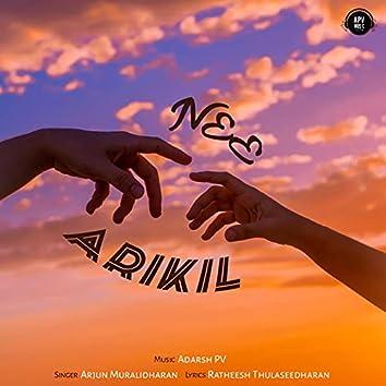 Nee Arikil