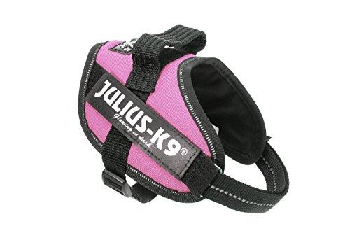 Julius-K9, 16IDC-PN-MM, IDC-Powergeschirr, Hundegeschirr, Größe: XS/Mini-Mini, pink