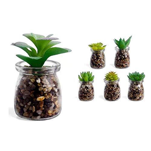 Unishop Set de 6 Plantas Suculentas Artificiales, Cactus Pequeños con Maceta de Cristal, Plantas Decorativas Falsas para Interior