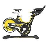 Horizon GR7 Indoor Bike + Console