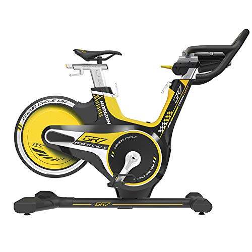 Horizon GR7 Indoor Bike + Console