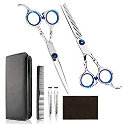 Top 10 Hairdressing Shears