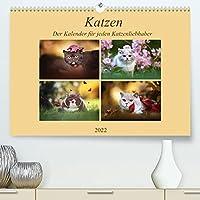 Katzen - Der Kalender fuer jeden Katzenliebhaber (Premium, hochwertiger DIN A2 Wandkalender 2022, Kunstdruck in Hochglanz): Bestueckt mit hochwertigen Fotos, kleiner und grosser Briten (Monatskalender, 14 Seiten )