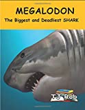 Megalodon: The Biggest and Deadliest SHARK (Age 5 - 8) (Discovering The World Around Us)