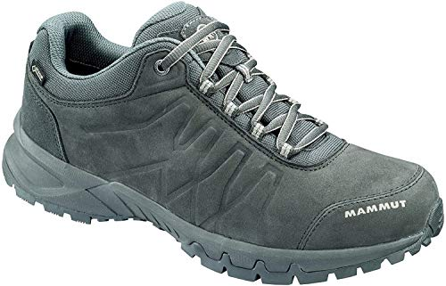 Herren Trekking- & Wander-Schuh Mercury III Low GTX®, Grau (graphite-taupe), 42 2/3 EU
