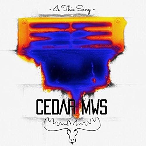 Cedar Mws