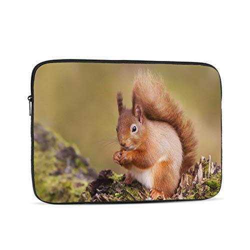 Eat Nuts Red Squirrel Wildlife On The Forest In Scotland Laptop Sleeve Compatible with MacBook iPad,iPad Pro,MacBook Pro,MacBook Air,Notebook Computer 12 inch