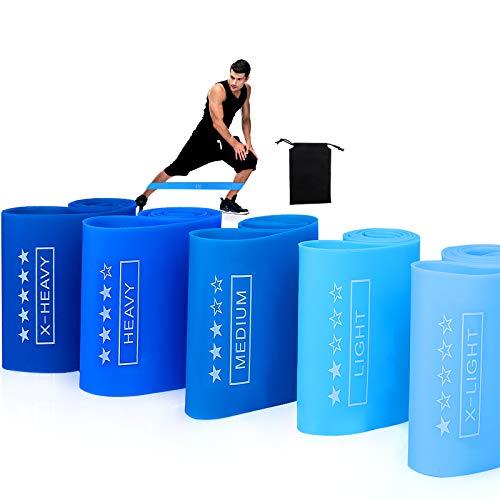 Sinwind Fitnessbänder, Widerstandsbänder 5er Set, Bänder Sport, Fitnessband Gymnastikband, Trainingsbänder, Terrabänder, Abduktoren Trainer für Muskelaufbau, Yoga (Blau)