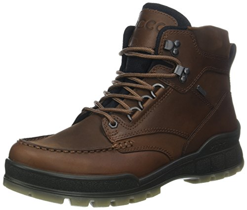 ECCO mens Track 25 High Gore-tex Hiking Boot, Bison/Bison Oil Nubuck, 8-8.5 US