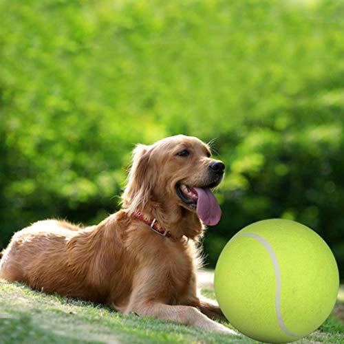 Yani DCT-2 Squishy Giant Tennisball Hundespielzeug Kauen Sport Outdoor Spielwurf Laufen Fetch 24CM