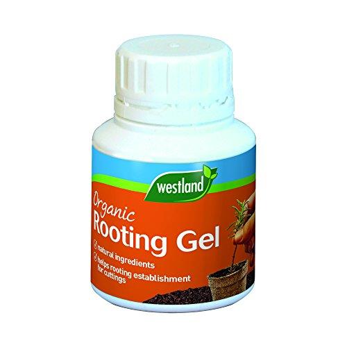 Westland 20200031 Organic Rooting Gel, 150 ml