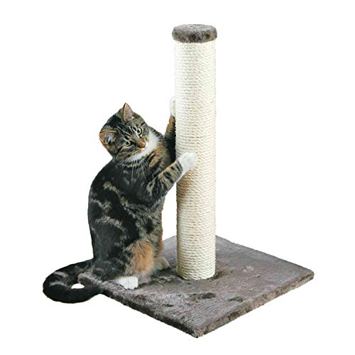 TRIXIE Pet Products Parla Scratching Post, Gray, 15.5 x 15.5 x 24.25 in.