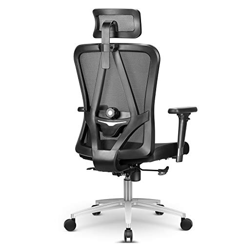 Ergonomic Office Chair, mfavour Office Chair with Bi-Directional Regulated Lumbar Support, 3D Armrest Swivel Executive Mesh Desk Chair for Home Office