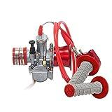 PZZZHF Motocicleta modificada PWK carburador 21 24 26 28 30 32 34 mm con Filtro del Acelerador apretones apretones de la Mano de Aire de la Copa de la Vespa ATV de (Color : 26mm Set)