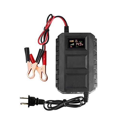 YTGUEVKDH Baterías Inteligente 12V 20A del automóvil Plomo-ácido Cargador de batería de Carga rápida de Pantalla LED Compatible with el automóvil del Coche de la Motocicleta (Color : US Plug)