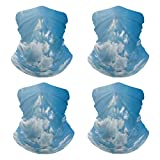 Neck Gaiter Skyscape of The Clear Sky Face Mask for Motorcycle NN-96572