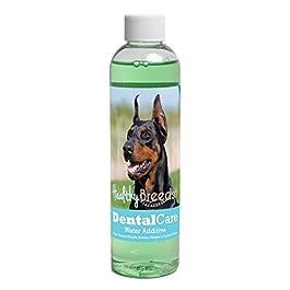 Healthy Breeds Dental Care Water Additive – Helps Freshen Breath, Reduce Plaque & Control Tartar – Veterinarian Formulated – Over 200 Breeds – Mint Flavor – 8 oz