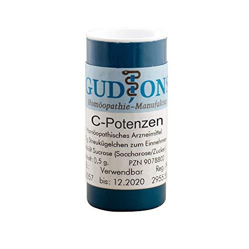 GUDJONS Phosphorus C200 Globuli, 0.5 g Globuli