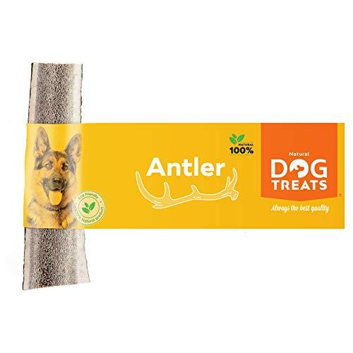 Geweih Kausnack für Hunde 100% Natürlich Hirschgeweih Kauspielzeug Kauknochen Hundeknochen, Größe Medium