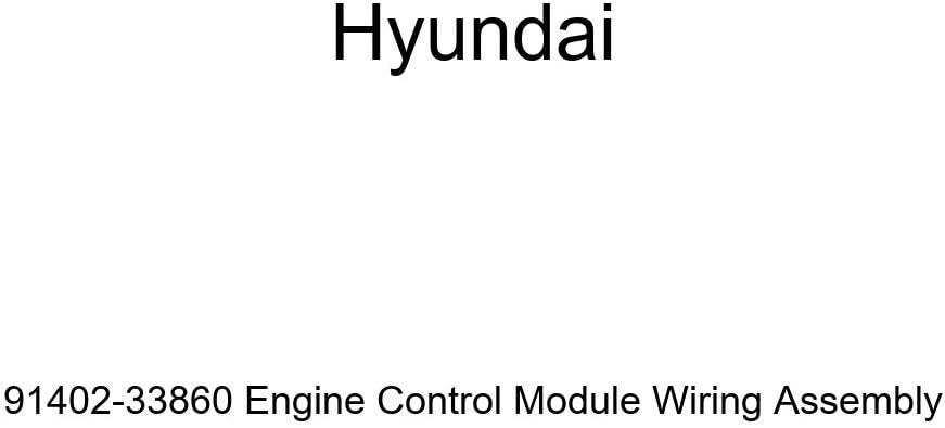 Genuine Max 67% OFF Hyundai security 91402-33860 Engine Assembl Module Control Wiring