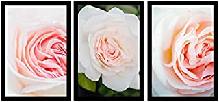 BIRD'S MIND Beautiful Rose Flower Art Set of 3 Combo Wall Hanging Synthetic Wood Photo Framed Poster for Living Room Home ...