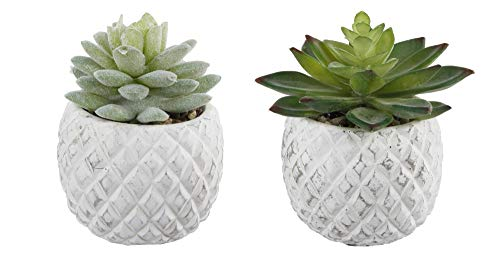 Flora Bunda Mid Century Artificial Plants Set of 2 Artificial Succulent in Cement Pineapple Pot White Planter White 3.5', Includes 2 Fake Plants for Home Office Decorations