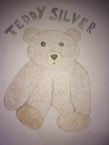 Teddy Silver (English Edition)