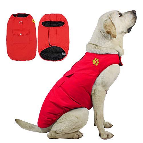 nobrand - Productos para Animales de compañía de Amazon de Doble Cara, cálidos y cálidos, de Piel Dorada, Gran Ropa para Perros, otoño e Invierno