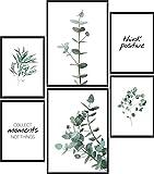 Calias® Premium Poster Set Eukalyptus | Bilder Set für