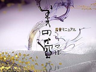 美の壺(NHKオンデマンド)