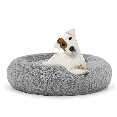 Pet Beds for Medium Dogs Raised Dog Bed for Pain Relief for Arthritis, Anti Anxiety Orthopedic Dog Bed