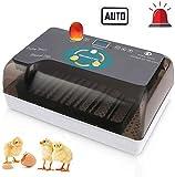 Incubatrice automatica per 12 uova Incubatrici con illuminazione a LED con display digitale rotazione automatica e controllo della temperatura efficiente e intelligente