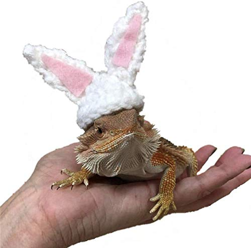 Lizard Hat for Bearded Dragons,Knitted Bunny Hat with Elastic Chin Strap Handmade Wool Cap Halloween Easter Christmas Dress Up Gift for Bearded Dragon,Hamsters,Fancy Rats,Sugar Gliders and Hedgehogs