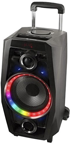 NGS Wild-80W schwarz–Tragbare Lautsprecher (verkabelt u. Kabellos, Batterie/Akku, Bluetooth/USB, Schwarz, Bluetooth, LED)