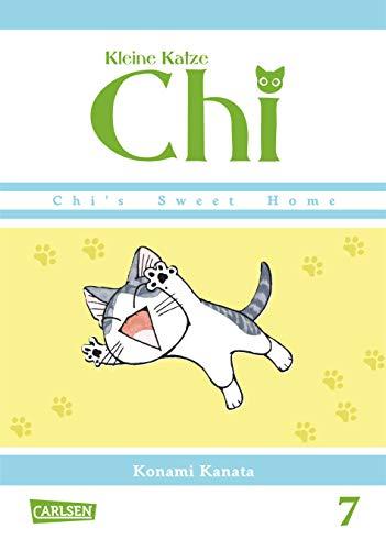 Kleine Katze Chi 7 (7)