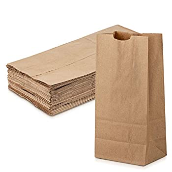 Grocery/Lunch Bag Kraft Paper 8 lbs Capacity Multipurpose Use Perfect for Shopping Storage Small Trash Cans and More - by MT Products  100 Count   Brown