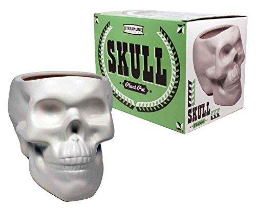 Plant Pot Skull Bone White