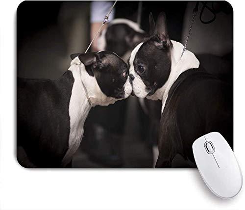 Alfombrilla de ratón para Juegos Personalizada, Boston Terrier, Alfombrilla de ratón de Oficina con Base de Goma Antideslizante, Escritorio
