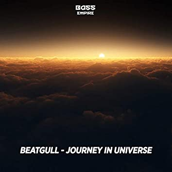 Journey in Universe
