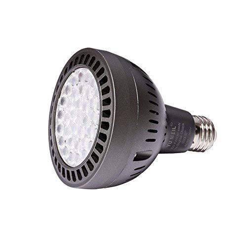 LED Pool Light Bulb - White - 120V 200 - 600 watt - 3900 lumens