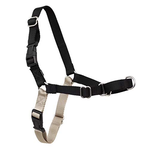 PetSafe Easy Walk Dog Harness, No Pull Dog Harness, Black/Silver, Medium/Large (EWH-HC-M/L-BLK)
