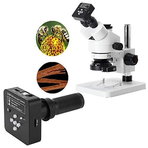 21MP high definition industriële microscoop camera instrumentenset met adapter 2 output voor de laboratoriumfabriek (# 3)