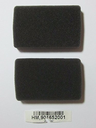 (Ship from USA) (2) Homelite / Green Machine Chainsaw AIR FILTER - See Models Below 901652001 /ITEM NO#E8FH4F85412640