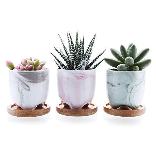 T4U 6cm Gelato Seriale Moderno Succulento Cactus Vasi Vegetali Vasi di Fiori Fioriere Contenitori Scatole di Finestra Pieno di Colori con Vassoi di bambù Pacchetto di 3