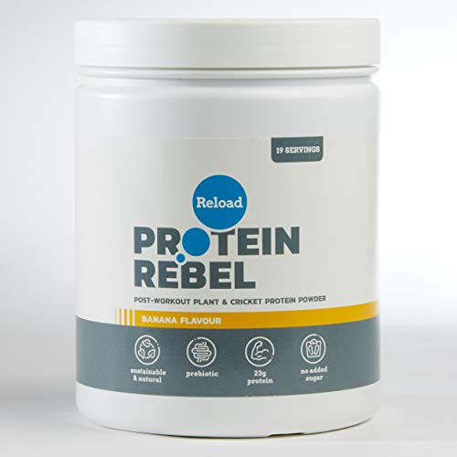 Reload Post Workout Protein Powder - Made from Pea Protein and Cricket Protein - 19 Servings (Banana)