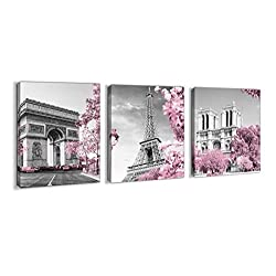 Paris Eiffel Tower Wall Decor for Girls Bedroom Pink Paris Room Decor Black and White Bathroom Pictures Wall Decor Modern Home Art Artwork for Walls Canvas Framed Wall Decoration Size 12x16 Each Panel