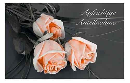 Merz Designkarten 10 Stück einfühlsame Premium-Trauerkarten/Beileidskarten im Set mit 10 edlen, weißen Umschlägen - aufrichtige Anteilnahme - Trauerkarte, Spruch, Text Beileid Mitgefühl, Todesfall